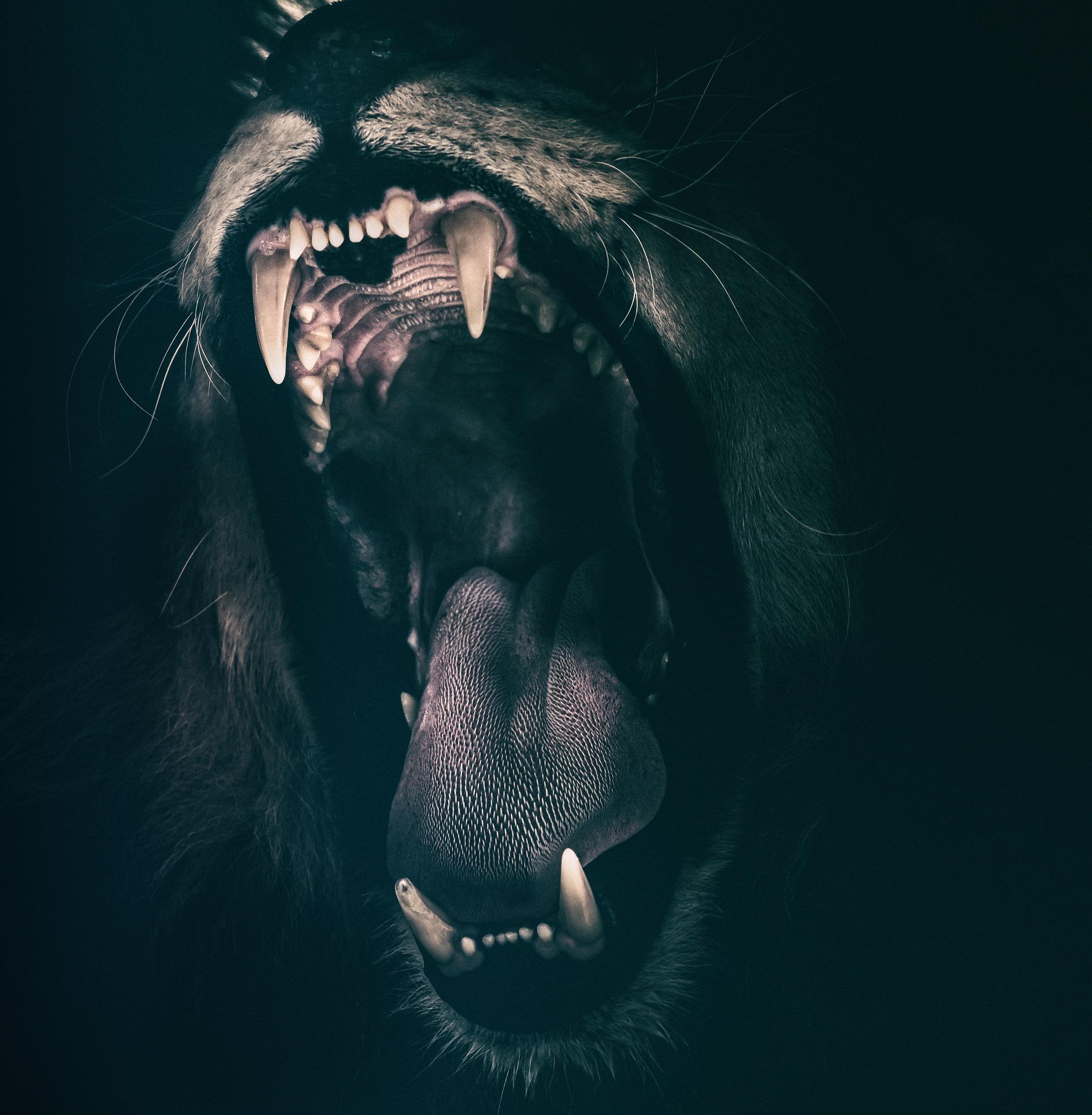 angst aangaan
