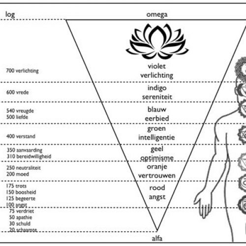 bewustzijns schaal